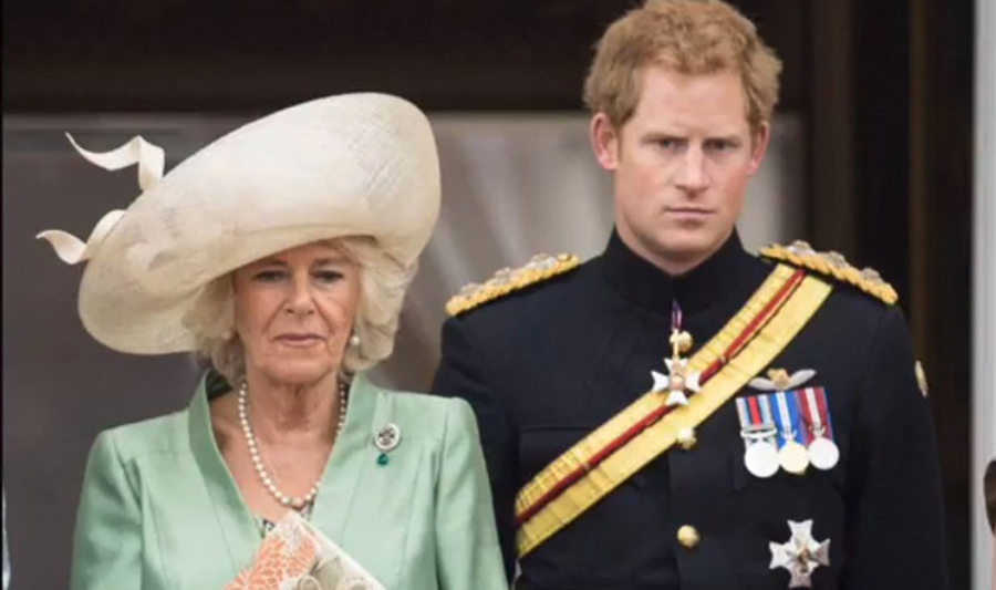 Ce părere are Prințul Harry despre mama sa vitregă, Camilla. Adevărul a ieșit la iveală